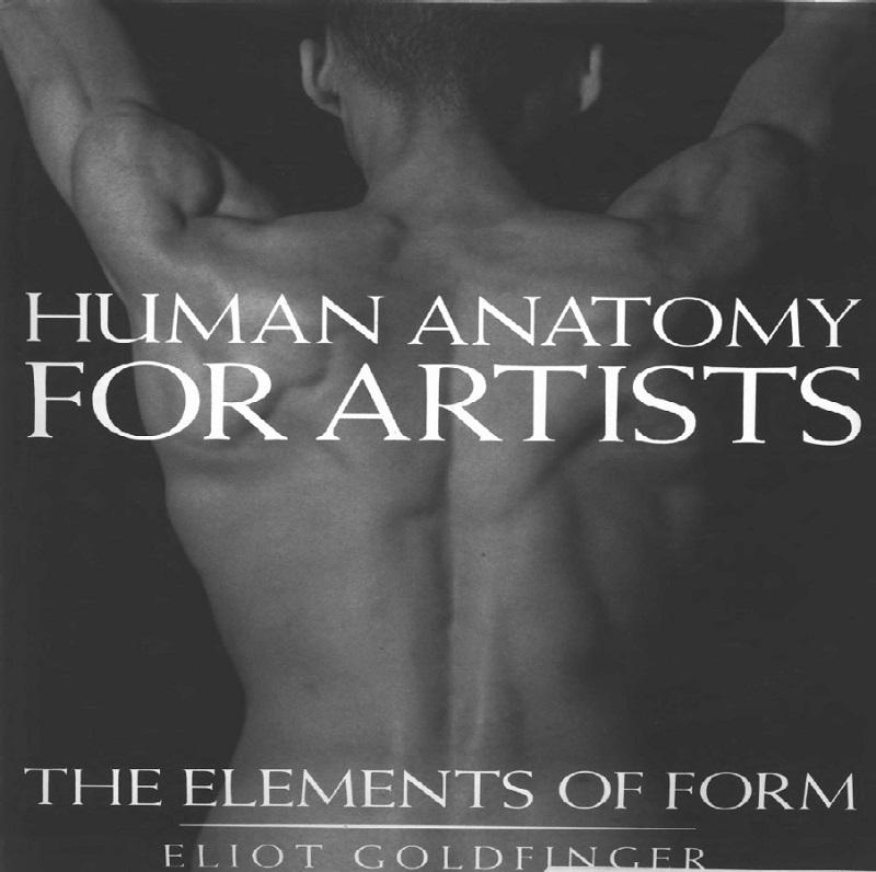 دانلود رایگان کتاب الکترونیکی آناتومی بدن انسان برای هنرمندان ...