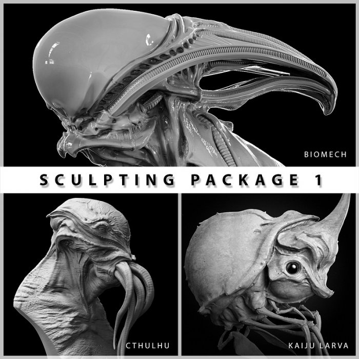 آموزش Gumroad - Sculpting Package 1 by Dominic Qwek