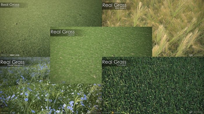 مدلهای سبزه VIZPARK - Real Grass for Cinema4D, Modo OBJ, FBX And LightWave